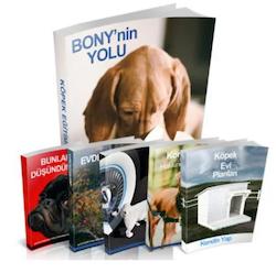 Bony'nin yolu köpek eğitimi hakkında bilgiler
